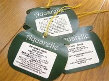 Aquarelle_2