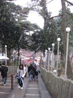 Myokensan2