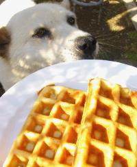 waffle-