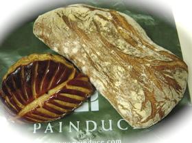 Painduce2